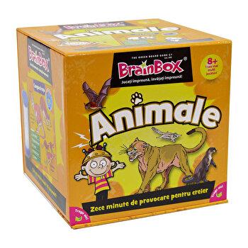 Joc Brainbox - Animale