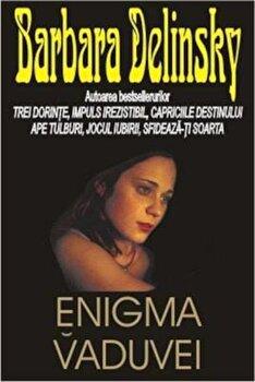 Enigma vaduvei/Barbara Delinsky