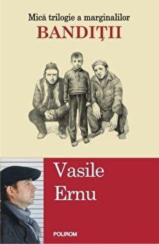 Banditii/Vasile Ernu imagine elefant 2021