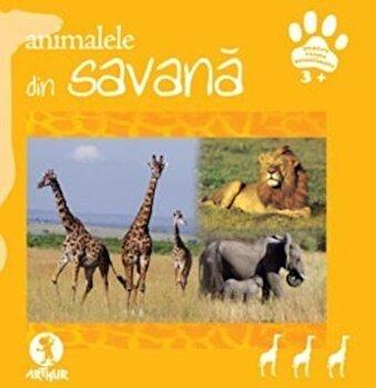 Coperta Carte Animalele din savana