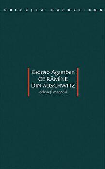 Ce ramane din Auschwitz/Giorgio Agamben poza cate