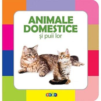 Coperta Carte Animale domestice si puii lor