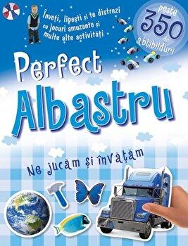 Perfect albastru - Ne jucam si invatam/***