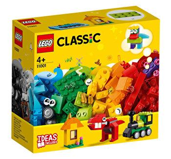 LEGO Classic, Caramizi si idei 11001
