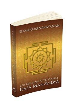 Imagine Cele Zece Mari Puteri Cosmice - Dasa Mahavidya - sri S - Shankaranarayanan