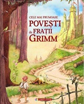 Cele mai frumoase povesti de Fratii Grimm/Fratii Grimm