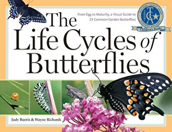 The Life Cycles of Butterflies: From Egg to Maturity, a Visual Guide to 23 Common Garden Butterflies, Paperback/Judy Burris poza cate