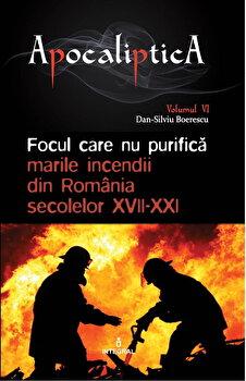 Focul care nu purifica: marile incendii din Romania secolelor XVII-XXI/Boerescu Dan-Silviu