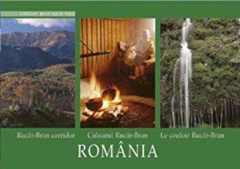Calator prin tara mea. Culoarul Rucar - Bran/Florin Andreescu, Mariana Pascaru imagine elefant.ro