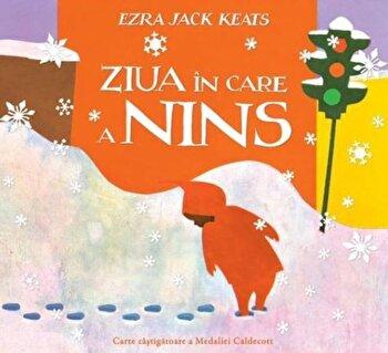 Coperta Carte Ziua In Care A Nins