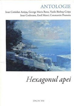Hexagonul apei/Emil Matei, Ioan Coriolan Anitas, Ioan Codreanu imagine