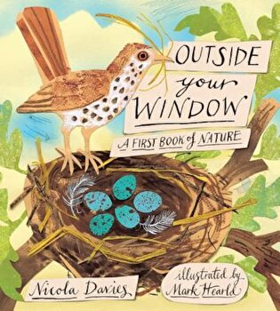 Outside Your Window: A First Book of Nature, Hardcover/Nicola Davies poza cate