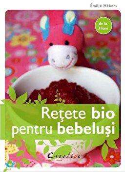 Retete bio pentru bebelusi/Emilie Hebert imagine elefant.ro 2021-2022