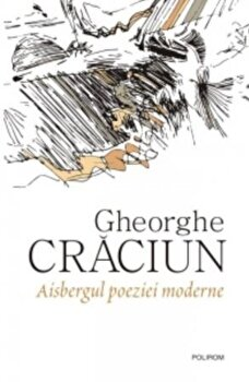 Aisbergul poeziei moderne-Gheorghe Craciun imagine