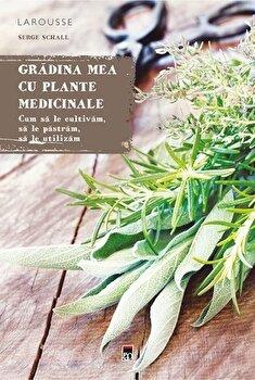 Gradina mea cu plante medicinale/Serge Schall imagine elefant.ro