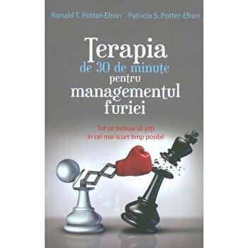 Terapia de 30 de minute pentru managementul furiei/Ronald T. Potter-Efron, Patricia S. Potter-Efron imagine elefant.ro