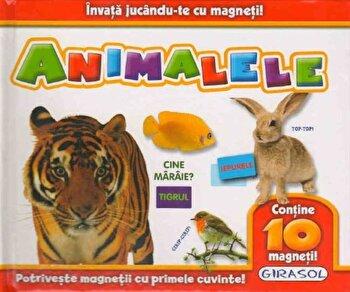 Invata jucandu-te cu magneti! Animalele (Contine 10 magneti)/*** imagine elefant.ro