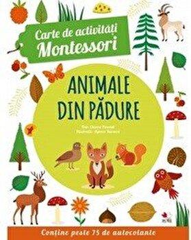 Carte de activitati Montessori. Animale din padure/*** imagine