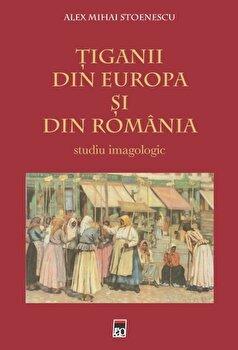 Tiganii din Europa si din Romania/Alex Mihai Stoenescu