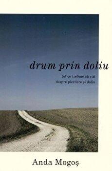 Drum prin doliu/Anda Mogos imagine