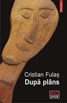 Dupa plans/Cristian Fulas