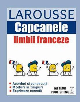Capcanele limbii franceze/*** imagine elefant.ro