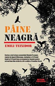 Paine neagra/Emili Teixidor imagine elefant 2021