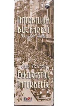 Album Bucurestiul Interbelic. Calea Vicoriei/*** imagine elefant.ro 2021-2022