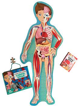 Imagine Corpul Uman - Calatoreste, Invata, Exploreaza - matteo Gaule