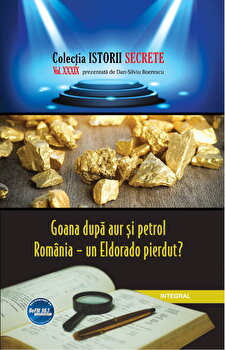 Goana dupa aur si petrol. Romania - un Eldorado pierdut'/Dan Silviu Boerescu