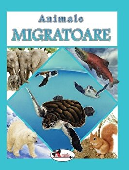 Animale migratoare/*** imagine elefant.ro 2021-2022