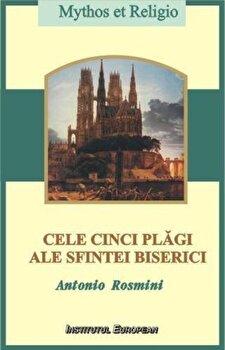 Coperta Carte Cele cinci plagi ale Sfintei Biserici. Principii pentru desavarsirea crestineasca