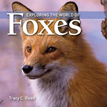 Exploring the World of Foxes, Paperback/Tracy C Read poza cate