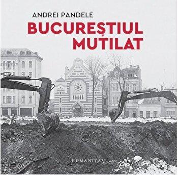 Bucurestiul mutilat/Andrei Pandele