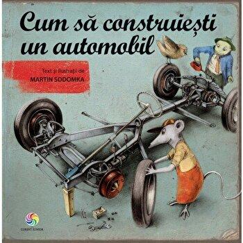 Cum sa construiesti un automobil/Martin Sodomka
