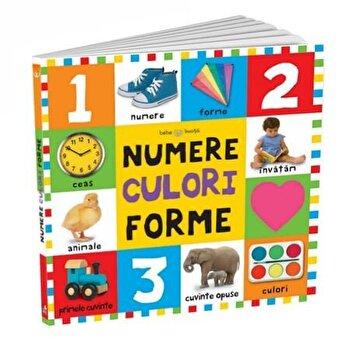 Bebe invata. Primele numere, culori, forme-*** imagine