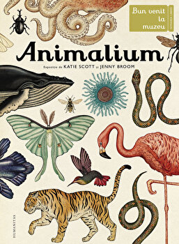 Animalium. Bun venit la muzeu. Intrarea libera/Katie Scott, Jenny Broom imagine elefant.ro