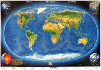 Harta panoramica a lumii cu relief oceanic/*** imagine elefant.ro