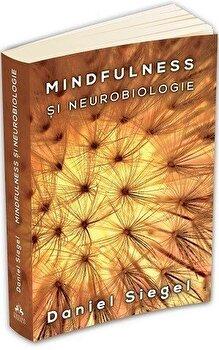 Mindfulness si neurobiologie - Calea catre cultivarea starii de bine/Daniel J. Siegel imagine elefant.ro 2021-2022