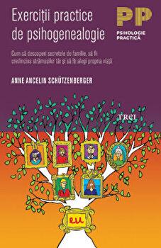 Exercitii practice de psihogenealogie/Anne Ancelin Schutzenberger imagine