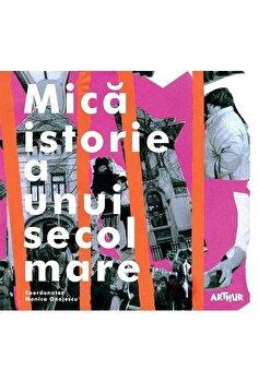 Mica istorie a unui secol mare/Monica Onojescu