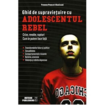 Ghid de supravietuire cu adolescentul rebel/Yvonne Poncet-Bonissol imagine