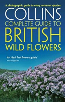 British Wild Flowers, Paperback/Sterry imagine