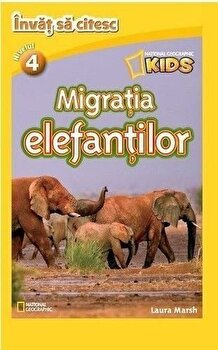 Migratia elefantilor/***