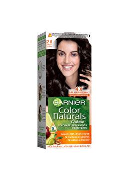 Vopsea de par permanenta Garnier Color Naturals, 2.1 Negru Albastrui, 110 ml imagine produs