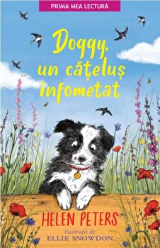 Doggy, un catelus infometat/Helen Peters