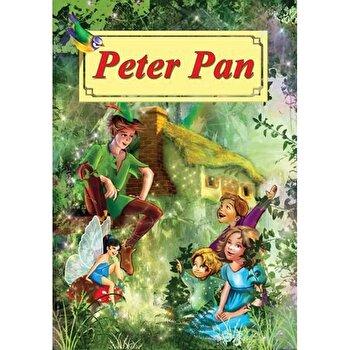 Peter Pan. Carte ilustrata/J.M.Barrie poza