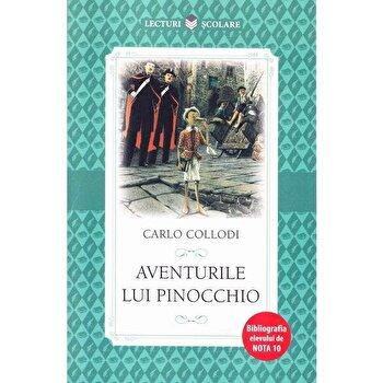 Aventurile lui Pinocchio/***
