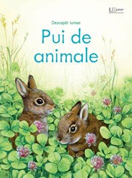 Pui de animale (Usborne)/Usborne Books