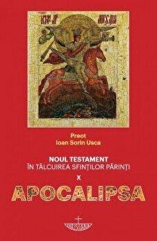 Noul Testament in talcuirea Sfintilor Parinti - Apocalipsa/Pr.Ioan Sorin Usca imagine elefant.ro 2021-2022